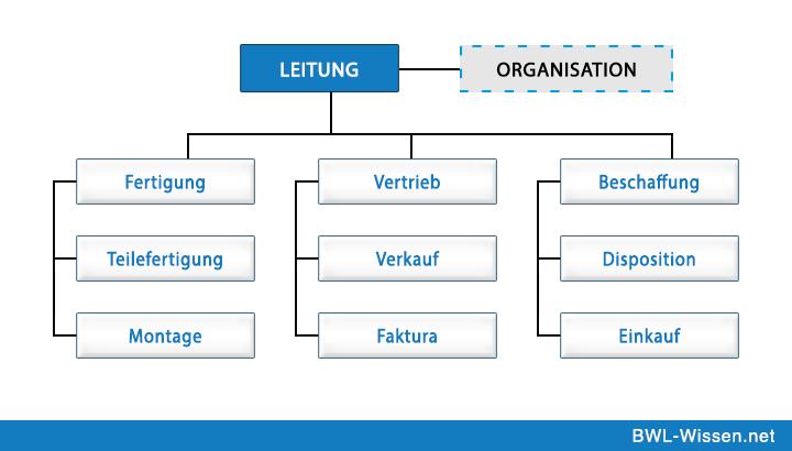 Stablinienorganisation