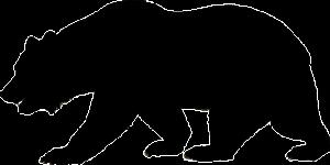 Bearish - Bärenmarkt